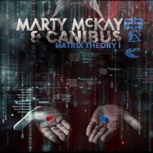 Matrix Theory I