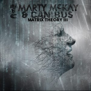 Matrix Theory III